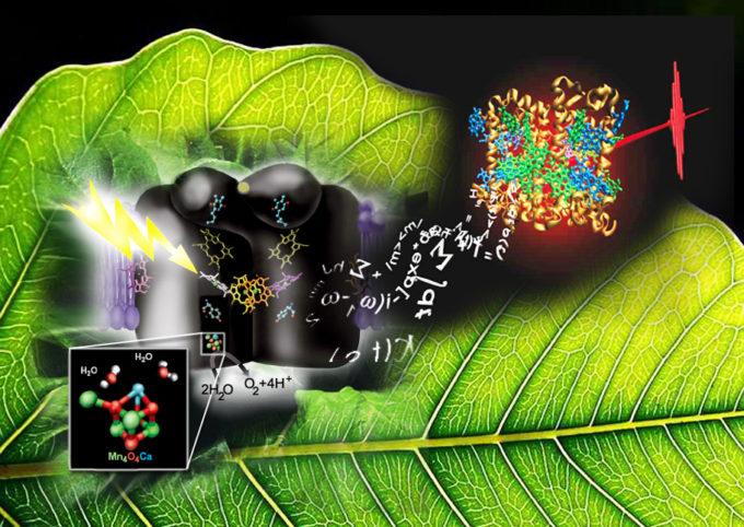 Technica Curiosa article on artificial photosynthesis